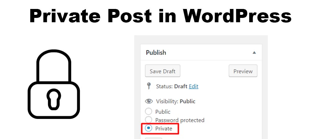 How To Create A Private Post In Wordpress Step Wise Instructions