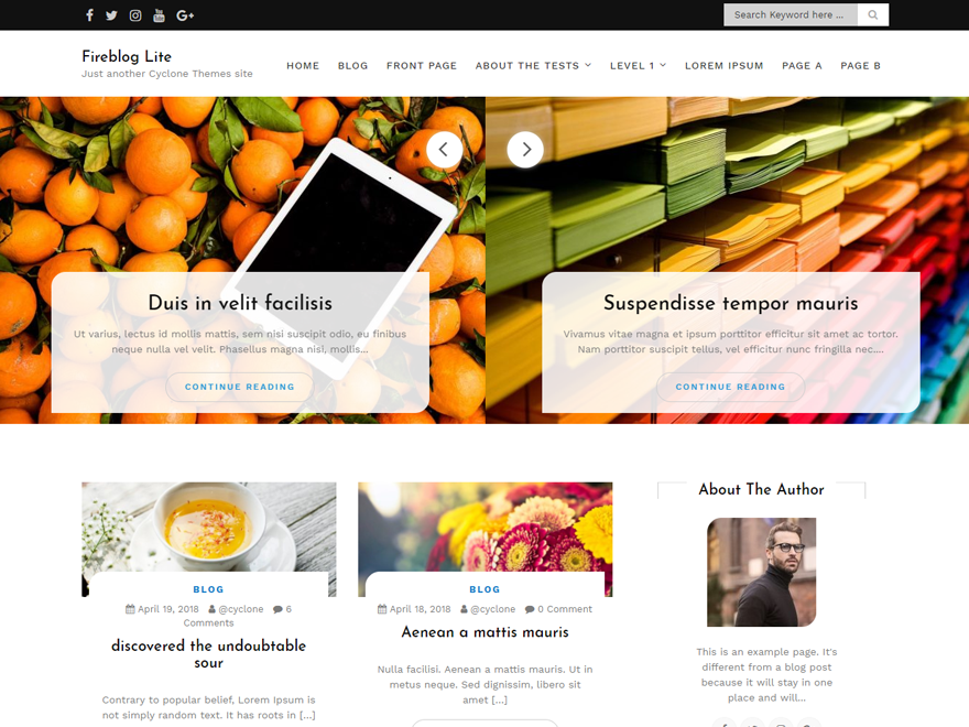 Adsense Optimized WordPress Themes For Magazine | Template Sell